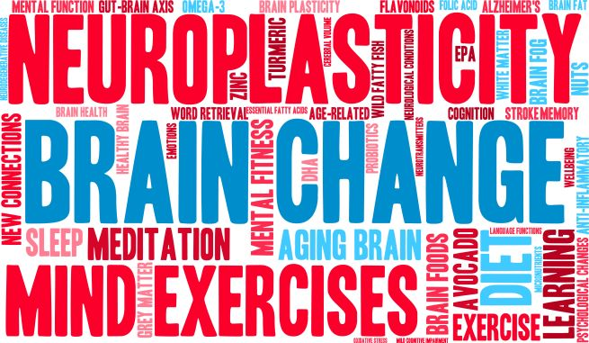 Neuroplasticity is how changes are made in chiropractic neurology